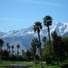 Palm Springs-Desert Princess Resort