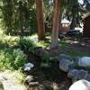 Deer Haven Lodge