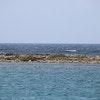 Coral Reef Beach Aruba