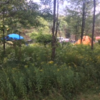 The Forest Lodge & Campground