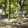 Plaza Goya Rooms