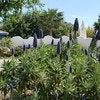 Quinta dos Cochichos