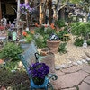 Courtyard Country Inn
