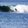 Turf n Surf