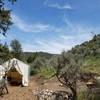 """Juniper's Rest"" Tent-Cabin"
