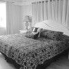 Suite, 1 Bedroom, Balcony, Oceanfront (Room 18)