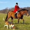 Horse & Hound Room