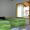 Habitación cinco  cama sencilla - Standard Rate