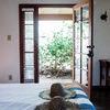 Room 5 - Terrace King