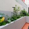 Garden Suite STANDARD
