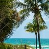 Bamboo Suite 1 King bed Queen sleeper couch sleeps 4, huge private deck looking out to the beach and water.