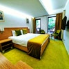 Deluxe double room with Balcony Standard