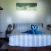Surf Room Standard Rate