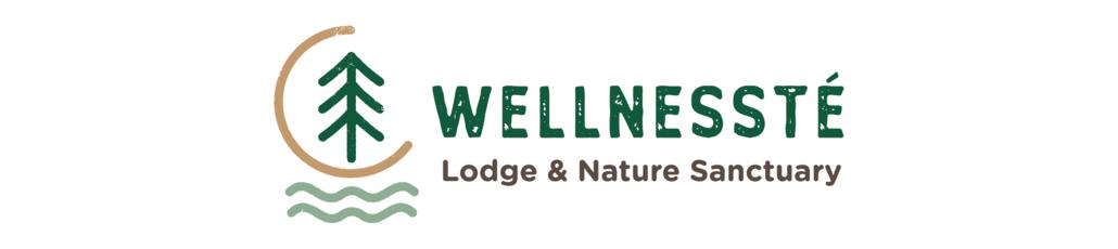 Wellnesste banner 1030x230px 01